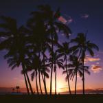 ハワイ・ペアの5日間の旅