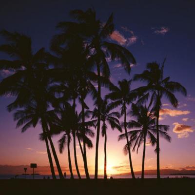 第15回 ハワイ・ペア5日間の旅
